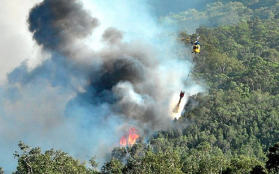 Meet the aerial angels that helped beat Coolum bushfire